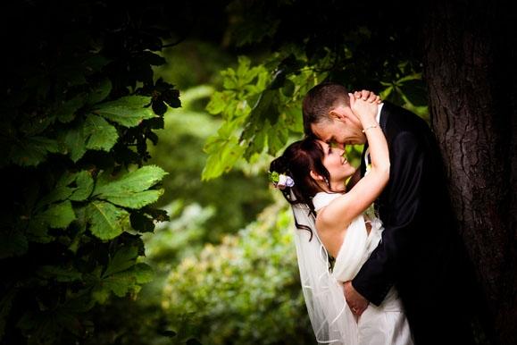 Hochzeitsfotograf - Hochzeitsportrait im Park des Schloß Albrechtsberg